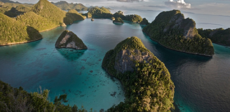 reefs of Raja Ampat