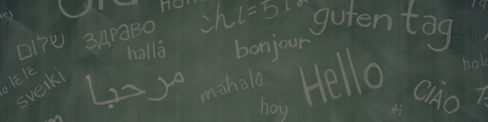The Best Tools to Learn a New Language on a Budget